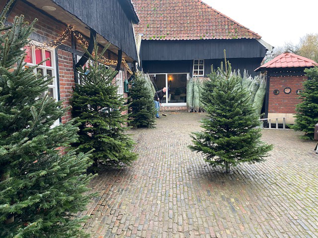 Watermolle_Nordman_kerst_02